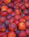 Nectarines a natural background of fruit on the farmer s market detail Stock Image