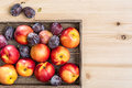 Nectarines and plums in a box. Royalty Free Stock Photo