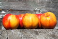Nectarines ripe sitting on wooden bench in late summer Royalty Free Stock Image