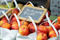 Nectarines for Sale Stock Photography