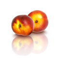 Nectarines two on a white background vector illustration wiht gradient mesh Stock Photography