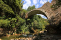 Neda river peloponnese greece stone bridge over Stock Photos