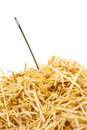 Needle in a haystack , Isolated on white Stock Images