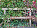 A neglected corner of the garden rotten old wooden bench overgrown by creepers in part Stock Image