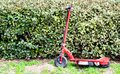 Neglected red motorized scooter leaning against green hedges Royalty Free Stock Photo