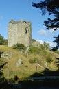 Neidpath Castle Royalty Free Stock Photo