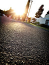 Neighborhood street at sunset Royalty Free Stock Photo