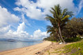 Nelly Bay Jetty and Palm Trees, Magnetic Island Townsville Royalty Free Stock Photo