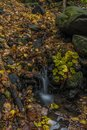 Nemecsky creek in Prucelska valley in autumn evening with color leafs Royalty Free Stock Photo