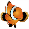 Nemo Foto de Stock Royalty Free
