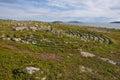 Neolithic labyrinth located at Oleshin Islind, Kuzova Archipelago,White Sea, Russia. Royalty Free Stock Photo