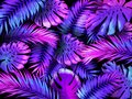 Neon color tropical leaves. Trendy colorful palm tree leaf, jungle background and purple exotic plants leaves vector Royalty Free Stock Photo