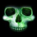 Neon skull in the darkness