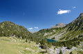 Neouvielle nature reserve in the summer pyrenees has mountainous lakes and rich flora and fauna slopes are covered with dwarf Stock Photo