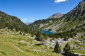 Neouvielle nature reserve in the summer pyrenees has mountainous lakes and rich flora and fauna slopes are covered with dwarf Royalty Free Stock Photo