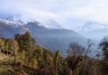 Nepal himalaya trekking in the Stock Image