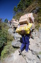 Nepali porters along the road to the top Stock Photography
