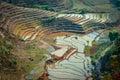 Nepali ricefields Royalty Free Stock Photo