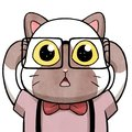Nerd cat having a mind-blowing revelation – isolated in white background