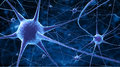 Nerve cells Royalty Free Stock Photo