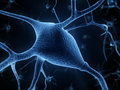 Nerve cells d rendered illustration cell Royalty Free Stock Photos