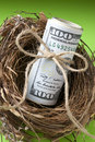 Nest of american money a with a roll on a green background Royalty Free Stock Photo