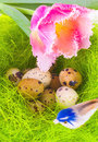 Nest with easter eggs and bird Royalty Free Stock Image