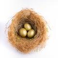 Nest Egg Royalty Free Stock Photo