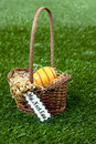 Nest egg basket in grass Royalty Free Stock Photo