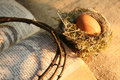 Nest and egg crown of thorn easter Royalty Free Stock Photo