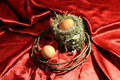 Nest and egg crown of thorn easter Stock Images