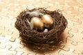 Nest Egg Strategy Royalty Free Stock Photo