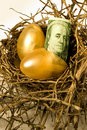 Nest eggs Stock Photo
