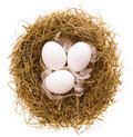 Nest and eggs Royalty Free Stock Images