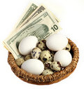 Nest with eggs vertical Royalty Free Stock Photo