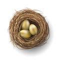 Nest with golden eggs on white background, illustration Royalty Free Stock Photo