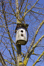 Nesting-box Royalty Free Stock Photo