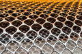 Net netting network meshwork mesh extent scope Royalty Free Stock Image