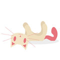 Nette karikatur cat isolated on white background Stockfotos