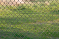 Netting fence metal is outdoors Royalty Free Stock Photos