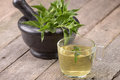 Nettle tea in a glass coup Royalty Free Stock Photo