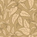 Nettle vector pattern