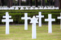 Nettuno april tombs american war cemetery of the american military in italy in italy Royalty Free Stock Image