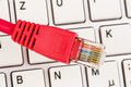 Network cable on keyboard to symbol photo for flat rate e commerce global communication Stock Photos