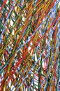 Network cables colorful in abstract form Stock Photos