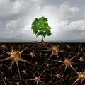 Neuron Brain Connection