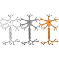 Neuron sketch in color, set