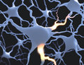 Neurones inside the brain concept of neurons and nervous system Royalty Free Stock Photos