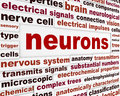 Neurons scientific words poster neurological science conceptual background Stock Image
