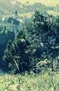 The Incredible Hills Surrounding Neuschwanstein Castle - Bavaria